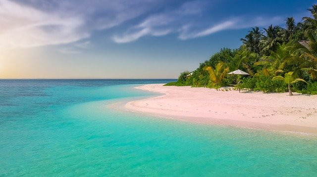 Beach, Paradise, Island, Palm Trees, Ocean, Romantic