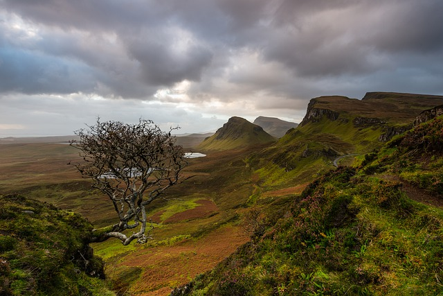 Scotland, Isle Of Skye, Quiraing, Nature, Sky, Bush