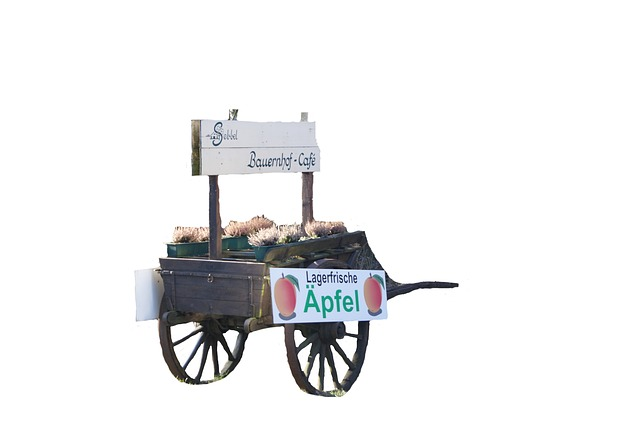 Isolated, Cart, Transport, Tools, Locomotion