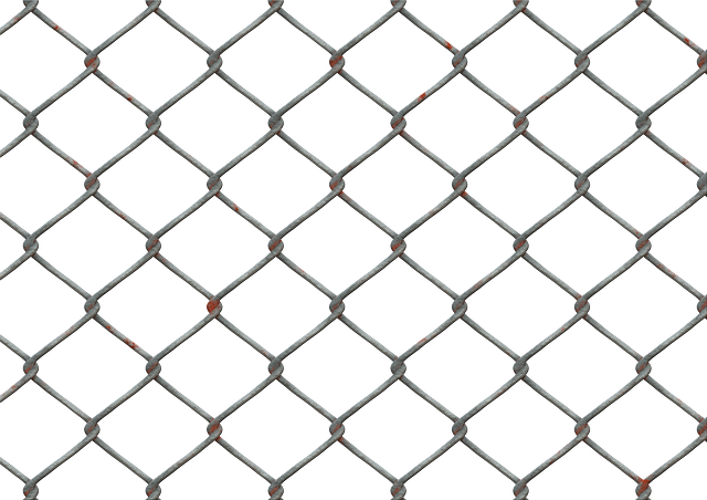 Wire Mesh, Fence, Wire Mesh Fence, Blocked, Isolated