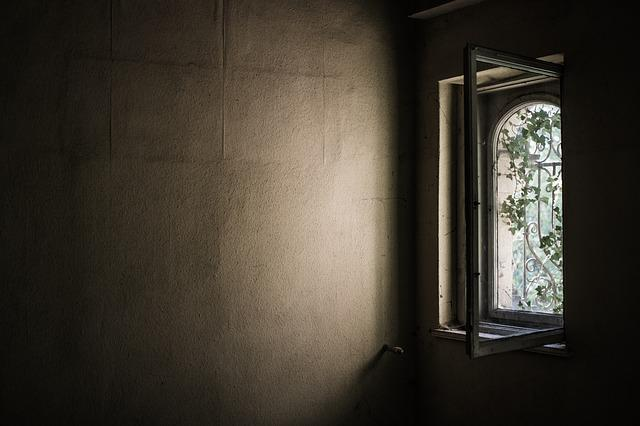 Window, Old, Abandoned, Ivy, Overgrown, Shadow, Frame