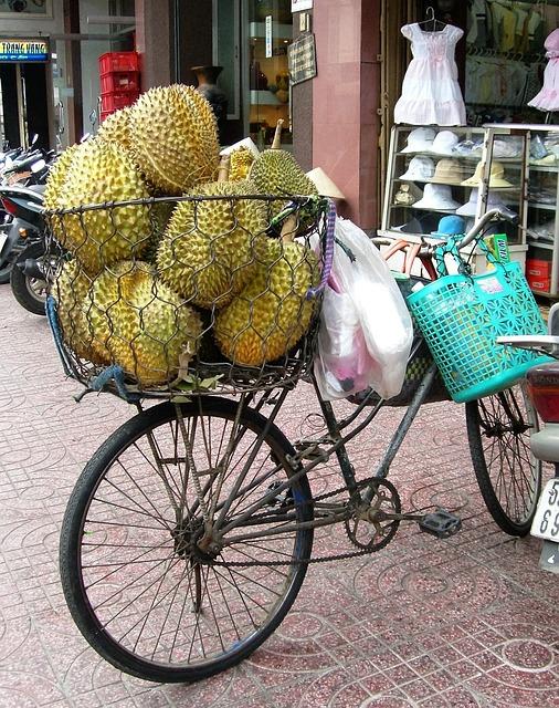 Fruit, Jackfruit, Bicycle, Bicycle Basket, Viet Nam