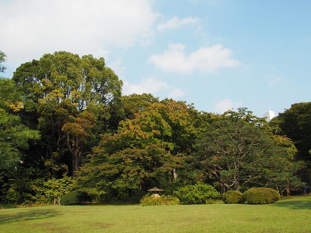 Garden, Lawn, Stone Lanterns, Early Autumn, Sky, Japan