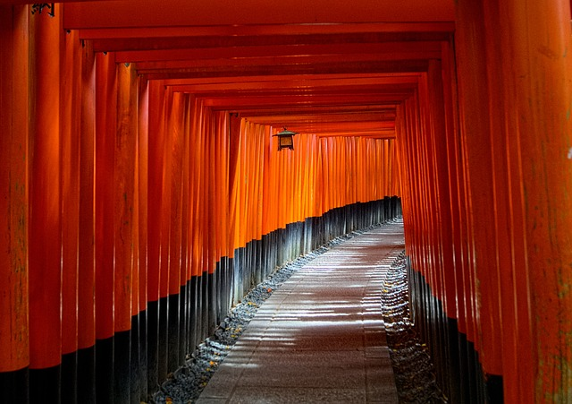 Kyoto, Japan, Torii Gate, Path, Spiritual, Asia