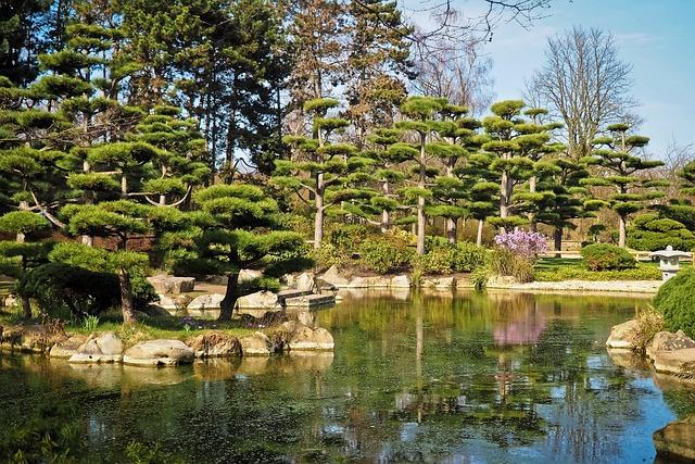 Landscape, Garden, Japanese Garden, Nature, Park, Trees