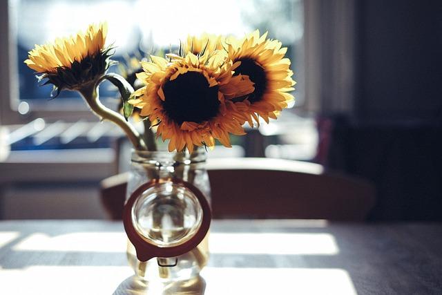 Bloom, Blossom, Blur, Flowers, Glass, Indoors, Jar