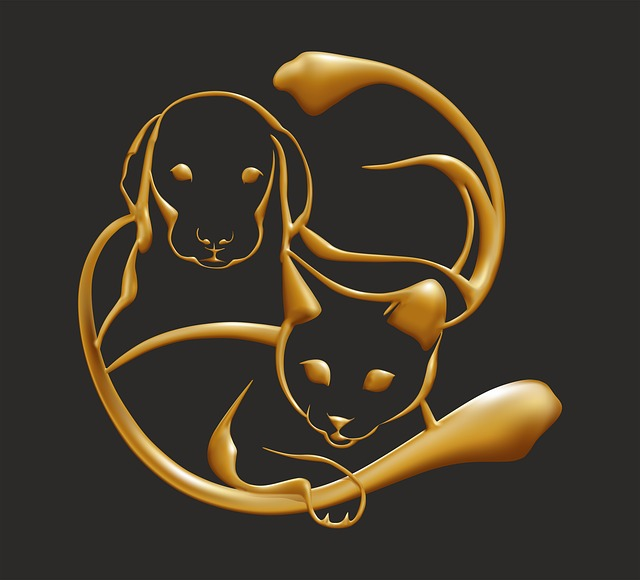 Gold, Dog, Cat, Animal, Jewel, Doré
