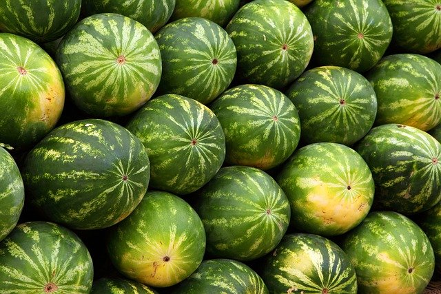 Watermelon, Background, Food, Fruit, Green, Juicy