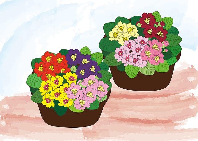 Julian, Flowers, Spring, Gardening