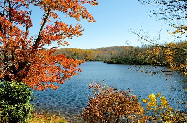 Julian Price Lake, Mountain Lake, Autumn, Fall Foliage