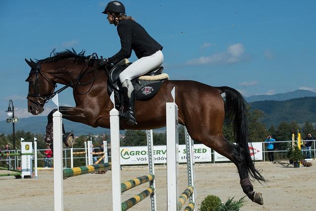 Parkúr, Jumping, Horse, Jockey, Race, Brown, Jump