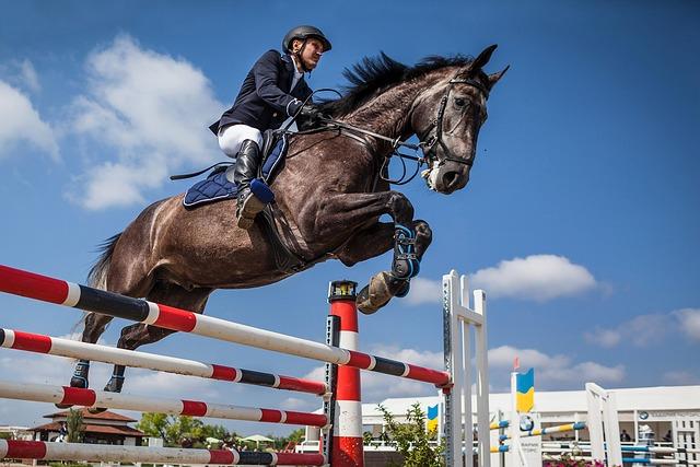 Horse, Rider, Show Jumping, Jump, Barrier, Sports