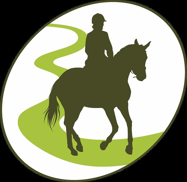 Endurance, Horseback Riding, Horse, Equine, Jumper