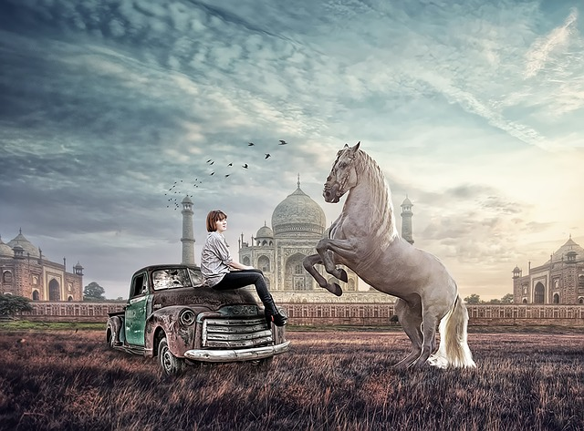 Horse, Imaginary, Girl, Taj Mahl, Jungle, Car, Picture