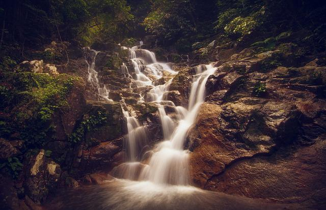 Waterfall, Jungle, Travel, Forest, Tourism, Nature