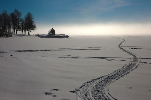 Kalix, Snowmobile Tracks, Mist, Winter