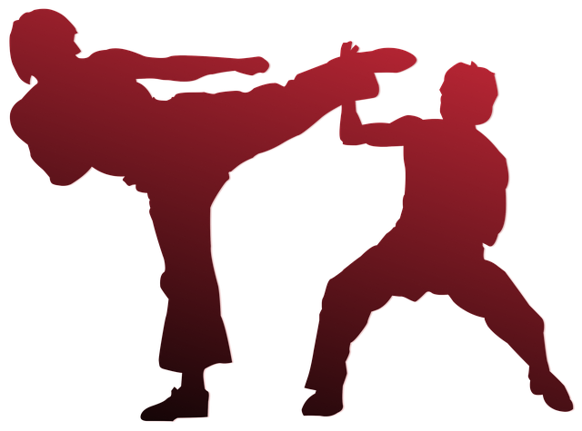 Karate, Silhouette, Outline, Sport, Martial, People