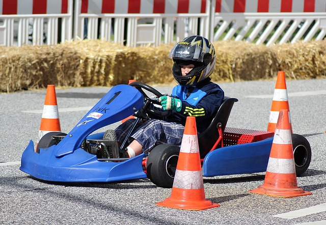 Kart, Cards Slalom, Cards Driver, Karting, Kart Racing