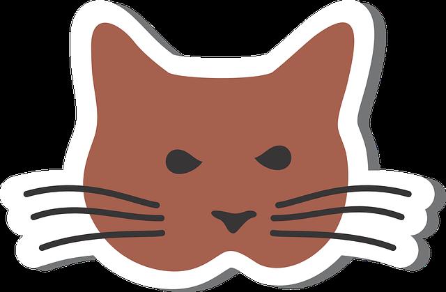 Cat, Kat, Domestic Cat, Animal, Sweet, Cat Portrait