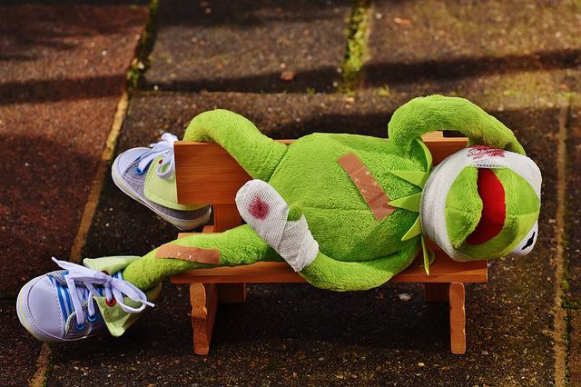Kermit, First Aid, Injured, Association, Blood, Frog