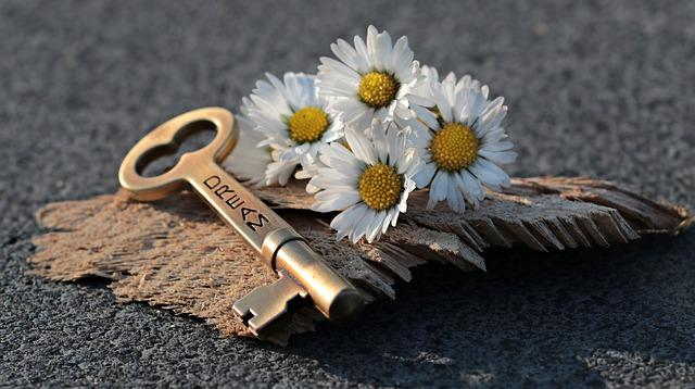 Key, Heart, Daisy, Love, Wood, Valentine's Day, Symbol