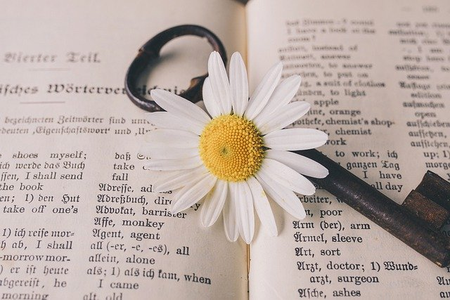 Key, Old, Flower, Nostalgic, Vintage, Marguerite