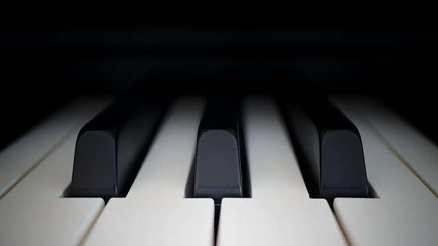 Piano, Ivory, Ebony, Synthesizer, Key