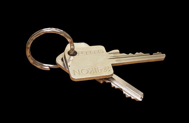 Key, Keychain, House Keys, Door Key, Keys, Metal