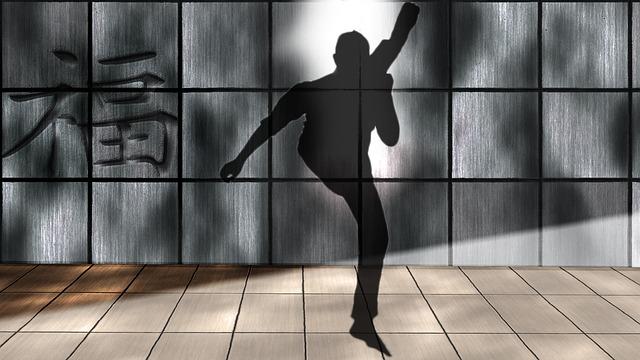 Shadow Boxing, Kick, Kick Boxing, Silhouette