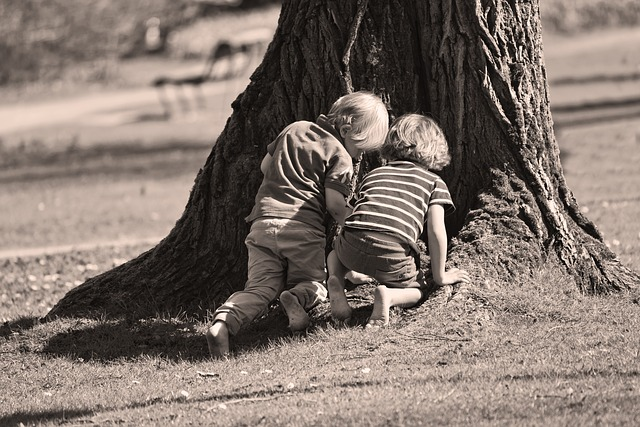 Little Boy, Boy, Child, Kids, Play, Outdoors, Tree