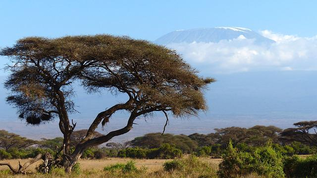 Kilimanjaro, Mountain, Africa, Amboseli Np, Kenya