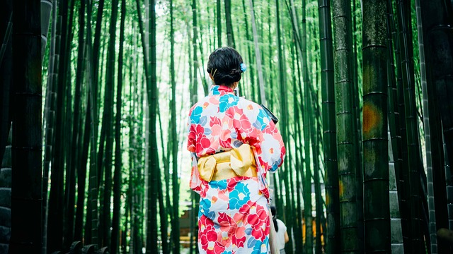 Bamboo Trees, Girl, Kimono, Outdoors, Trees, Woman
