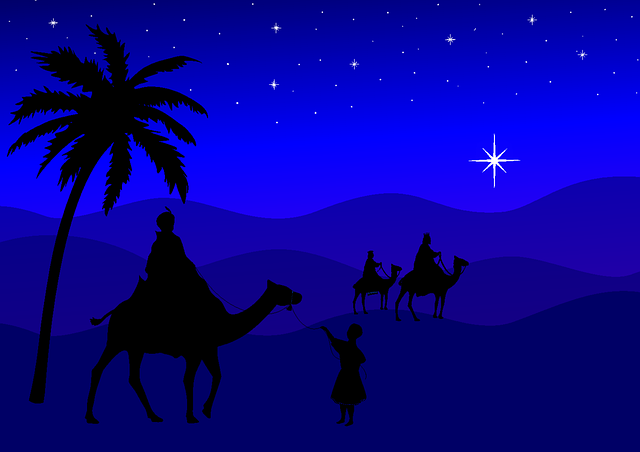 Holy Three Kings, Christmas, Kings, Camels, Palm, Night