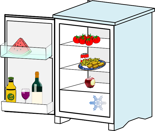 Refrigerator, Icebox, Freezer, Fridge, Cold, Emotionless, Appliance, Freeze,  Application | PixCove