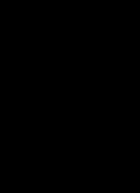 Cat, Kitten, Sitting, Silhouette, Outline, Black