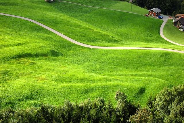 Klewenalp, Meadow, Mountain Farm, Farm, Alm