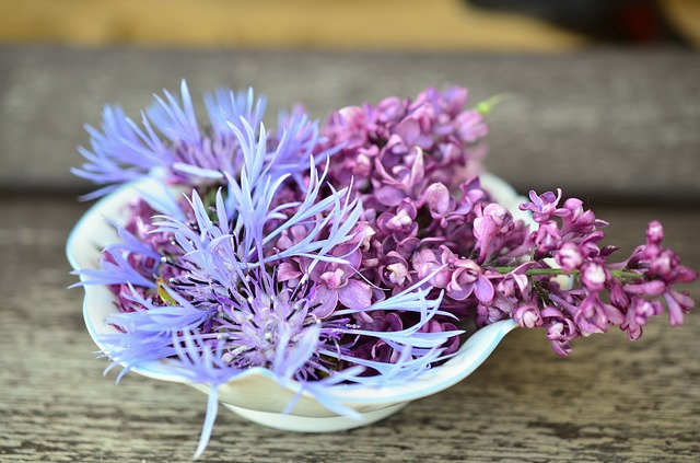 Flowers, Flower Bowl, Hall, Porcelain, Lilac, Knapweed