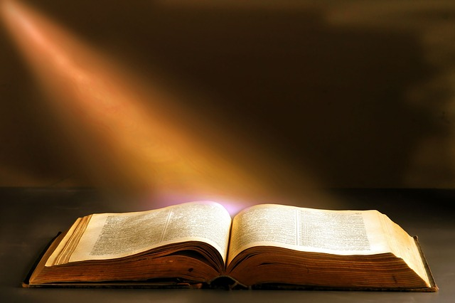 Literature, Wisdom, Book, Book Bindings, Knowledge
