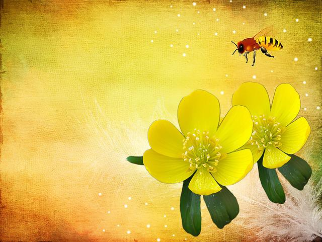 Potentilla, Kobold, Flower, Flowers, Yellow, Plant