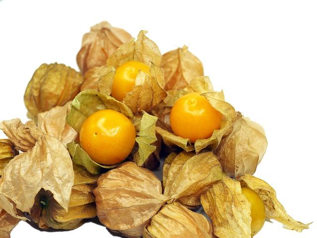Kut Berry, Fruit, Health, Orange, Berry, Nature