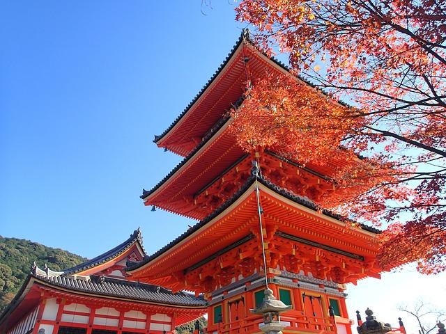 Autumn Leaves Hunting, Kyoto, Autumn