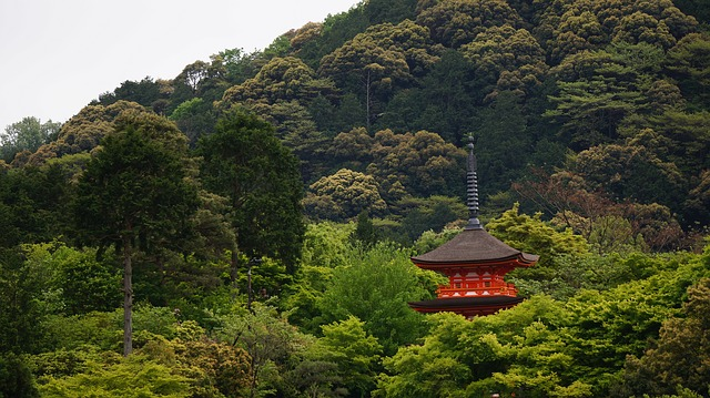 Kyoto, The Scenery, Temple, Asia, Roof, Trees