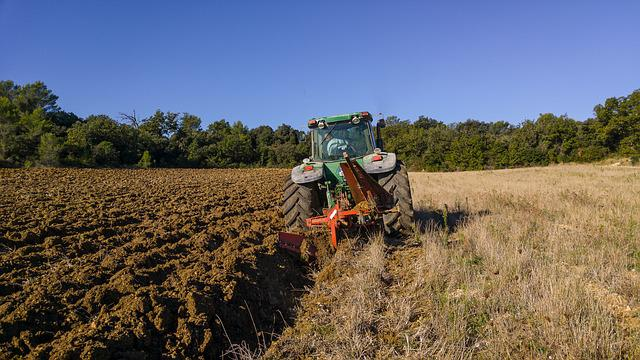 Tractor, Labour, Agricultural Machine, Agriculture