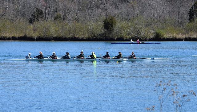 Ladies Scull Rowing, Scull Rowing, Ladies, Rowing