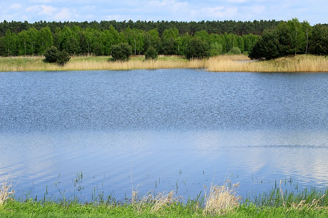 Lagoon, Pool, Pond-water, Landscape, Water, The Silence