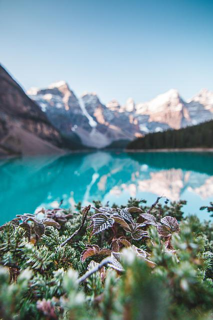 Banff, Alberta, Canada, Landscape, Lake, Water, Travel