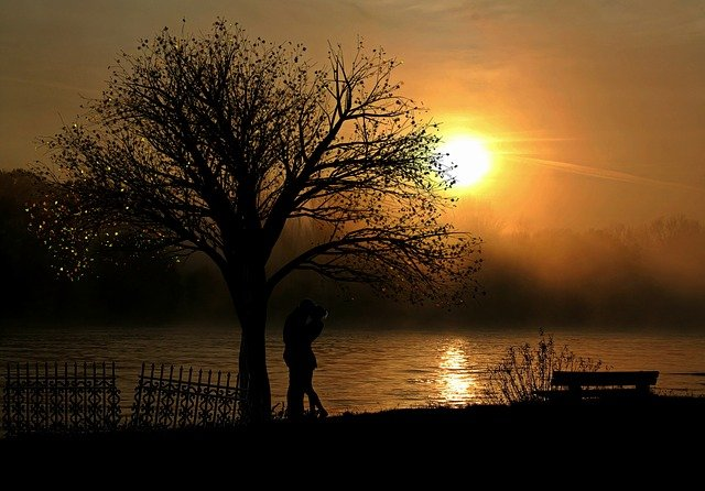 Lovers, Pair, Love, Sunset, Romance, Lake, Bank, Nature