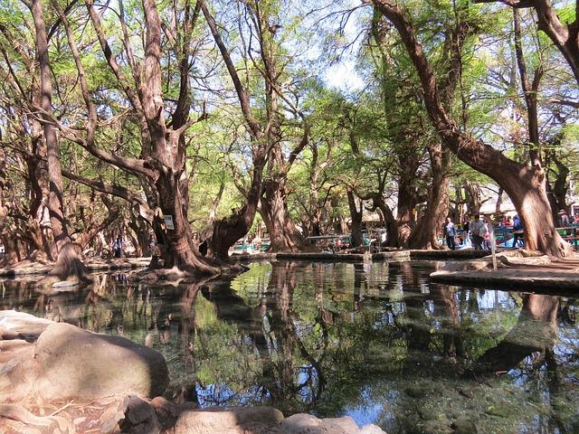 Lake, Nature, Beauty, Mexico, Tourism, Michoacán