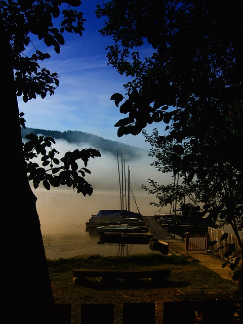 Lake, Titisee, Black Forest, Germany, Atmosphere, Boats
