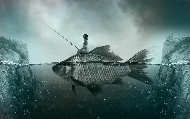 Fish, Lake, Fischer, Freshwater Fish, Angler, Landscape